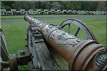 NS2310 : Cannon at Culzean Castle by Anthony Parkes