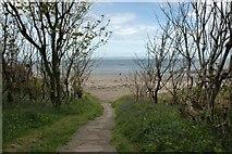 NS2109 : Beach at Maidenhead Bay by Anthony Parkes