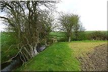 TQ9930 : On the footpath from Ham Farm to Johnson's Corner by Tim Heaton