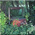 TL7134 : Well, Ost End, Finchingfield by Roger Jones