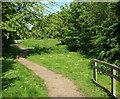 SK7154 : Southwell NG25, Notts. by David Hallam-Jones