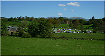 SD3598 : Campsite at Hawkshead Hall Farm by Peter Trimming