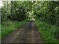 SU8873 : Hawthorn Lane by Alan Hunt