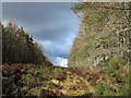 NH7482 : Forest ride on eastern side of Cnoc an t-Sabhail by Trevor Littlewood