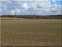NZ0367 : Farmland on Carrs Fell and Carrsfell Plantation by Mike Quinn