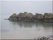NW9954 : Dorn Rock, Portpatrick Harbour by Stanley Howe