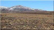 NN9687 : Moorland in Glen Geldie by Richard Webb