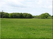 NY2460 : Fields near Glasson by David Purchase