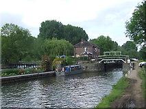 TL3706 : River Lee Navigation near Broxbourne by Malc McDonald