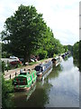 TL3808 : River Lee Navigation near Hoddesdon by Malc McDonald