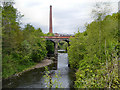 SJ9398 : Railway Viaduct over the River Tame by David Dixon