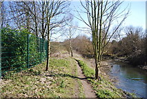 TQ5571 : Darent Valley Path & River Darent by N Chadwick