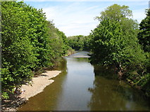 NY3956 : The River Caldew joins the River Eden by David Purchase