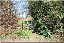 TQ5571 : Footpath off Darenth Road South by N Chadwick