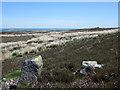 NZ0608 : Stone with waymark on Barningham Moor by Trevor Littlewood