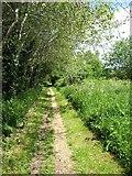 NY3856 : The Hadrian's Wall Path leaving Carlisle by David Purchase