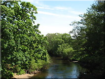 NY4960 : The River Irthing at Ruleholme Bridge by David Purchase