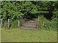 SU8973 : Bridge, Chawridge Bank by Alan Hunt