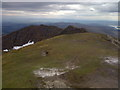 NN3602 : The Summit Ridge, Ben Lomond by Mick Garratt