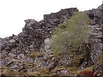 NM8994 : Upper part of Carn Mor by Sally