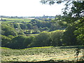 SW6228 : The wooded valley at Roseladden by Rod Allday