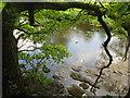 SK2181 : River Derwent by Dave Pickersgill