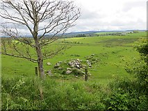 NU0011 : Ruined dyke, Prendwick by Richard Webb