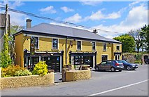 S5301 : The Copper Hen (1), Fenor, Co. Waterford by P L Chadwick