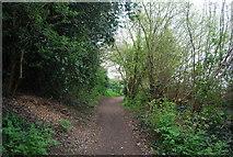 TQ6668 : Scotland Lane by N Chadwick