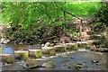 NZ0738 : Stepping Stones, Waskerley Beck by Mick Garratt