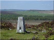 SK2773 : Birchen Edge trig point by Andrew Hill