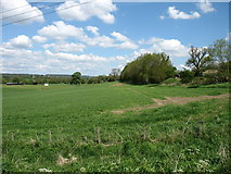 NY9270 : Fields near Chollerford by David Purchase