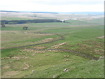 NY8070 : The lands north of Hadrian's Wall by David Purchase