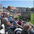 TA0389 : Scarborough: sunlit cricket crowd by John Sutton
