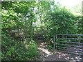 TQ0284 : Footpath near Iver Heath by Malc McDonald
