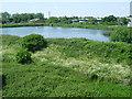TQ1968 : A lagoon in Hogsmill Valley Sewage Works by Marathon