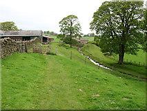 NY6466 : Chapel House Farm by David Purchase