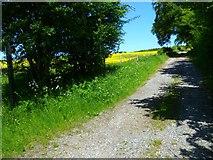 SU2467 : The Orange Way in Wiltshire (391) by Shazz
