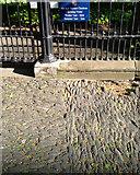 NT2572 : Basalt chip paving, north side of George Square by Robin Stott