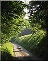 SX4065 : Lane to Tremoan by Derek Harper