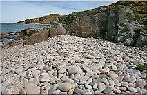 NJ1570 : Mature Storm Beach by Anne Burgess