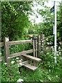 SK6151 : Public footpath towards Watchwood Plantation by Christine Johnstone