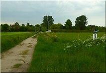 SU4773 : The Orange Way after Wiltshire (84) by Shazz