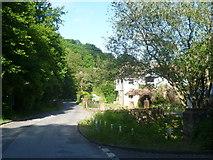 TQ6056 : Looking along Basted Lane by Marathon