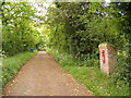 TM4784 : Entrance to Sotterley Hall & The Common Postbox by Adrian Cable