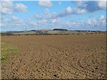 NZ0666 : Farmland south of Bogle Burn (2) by Mike Quinn