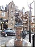 NT2573 : Greyfriars Bobby by Paul Gillett