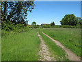 TM4582 : Track near Middle Green, Stoven by Roger Jones