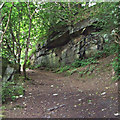 SJ9993 : Cobbled track by Stephen Burton