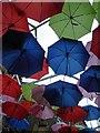 TQ3280 : The umbrellas of Borough by Steve  Fareham